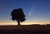 Komet Neowise_05